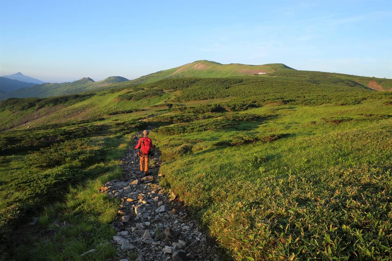 【北アルプス】太郎平から黒部五郎岳へ稜線ハイク