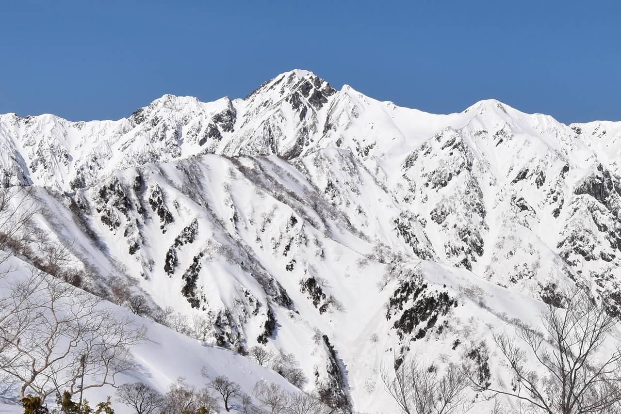 北アルプス・遠見尾根から眺める冬の五竜岳