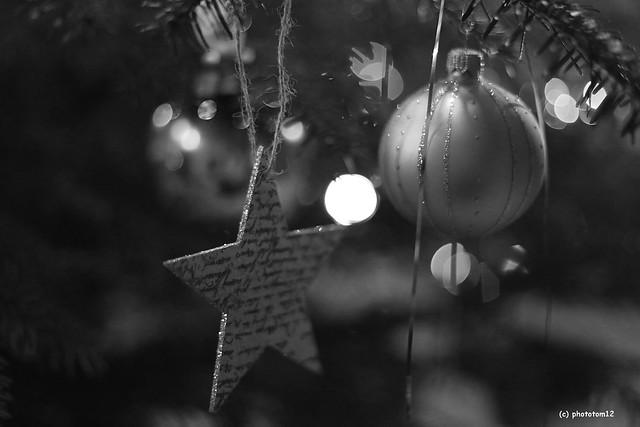 Stern und Kugel am Weihnachtsbaum schwarz-weiss