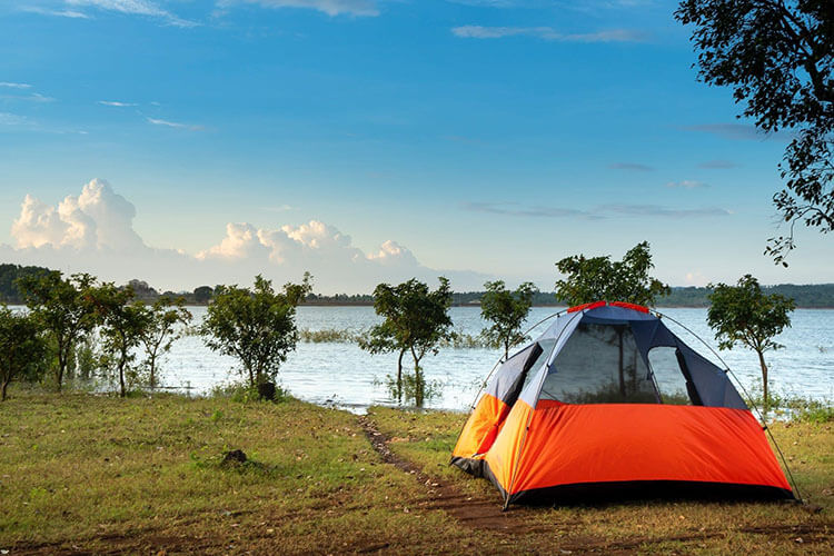 Camping Trips experience in Toowoon Bay