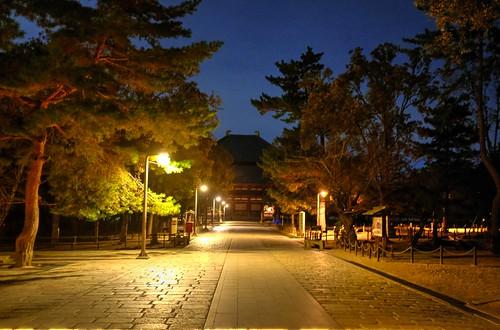 23-12-2020 Nara in evening (8)