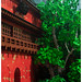 Spirited Away | Red Gate