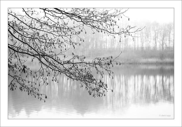 Leica M Monochrom 246, Leica Macro-Elmar-M 90/4