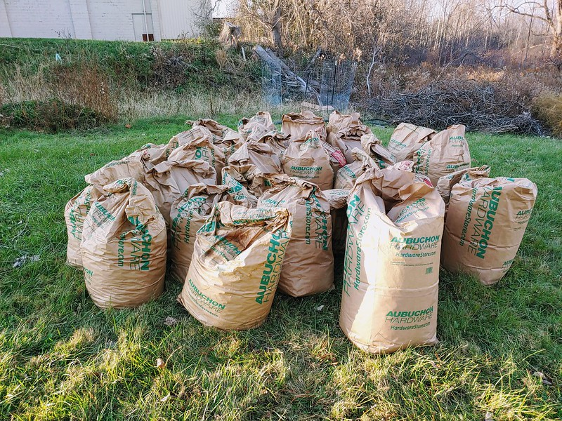 ~30 Bags of autumn leaves donated by neighbors