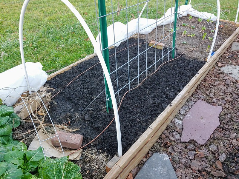 Clearing out a vegetable bed and putting down soil, compost, leaves, and minerals