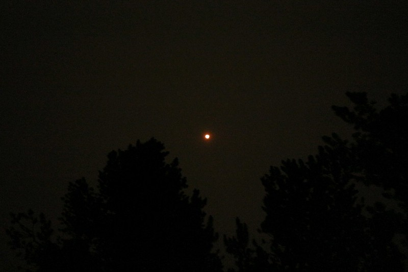 We woke up early in the dark and smelled smoke in the air - the full moon was orange-colored from the smoke