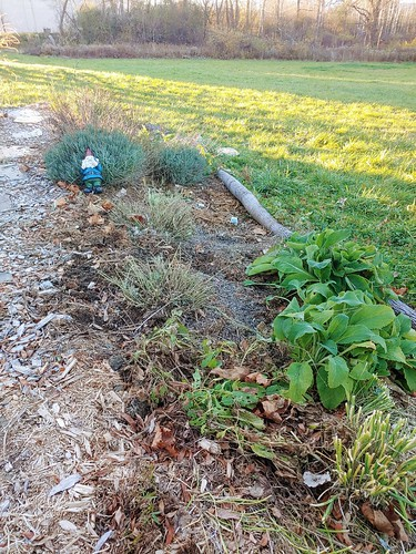Prepping the Flower Garden for Winter - after