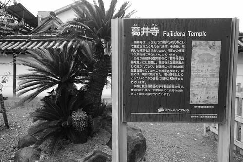 24-12-2020 (4th) visiting Fujiidera, Osaka pref (16)