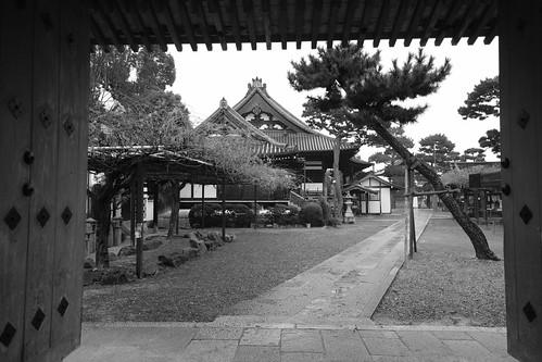 24-12-2020 (4th) visiting Fujiidera, Osaka pref (13)
