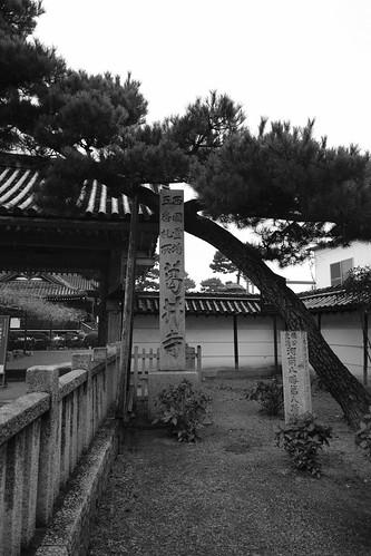 24-12-2020 (4th) visiting Fujiidera, Osaka pref (12)