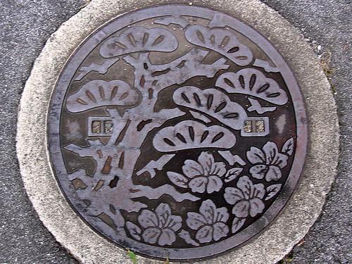 Ryuo Shiga, manhole cover 2 (滋賀県竜王町のマンホール2)