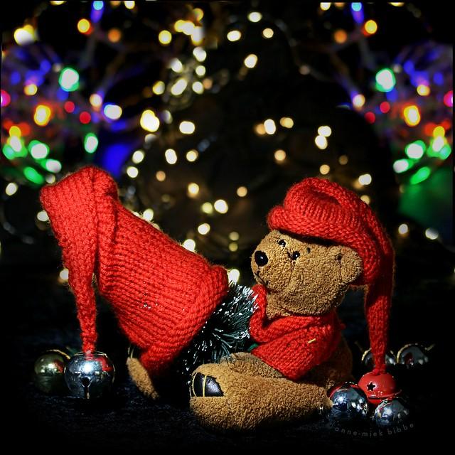 I KEEP MY CHRISTMAS TREE NICE AND WARM || STEL JE VOOR DAT HIJ KOU VAT!