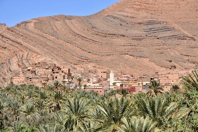 mountain - village - palm trees