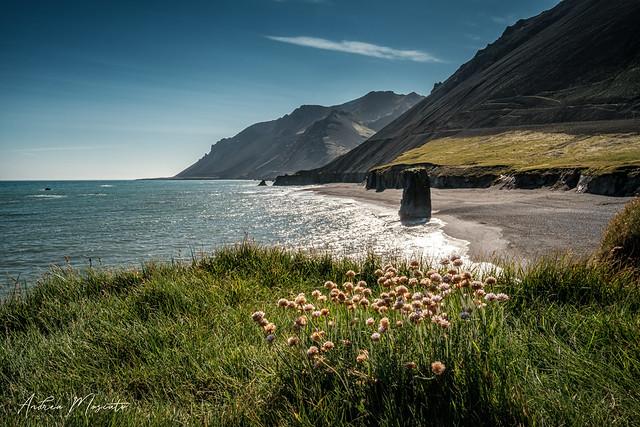 Lækjavik (Iceland)