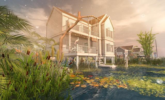 My new Linden Home | Stilt House | Santiago