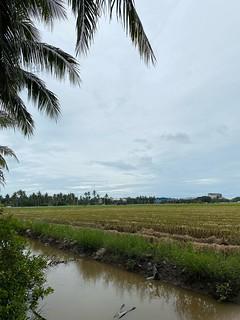 Trip to Sekinchan, Tanjung Karang
