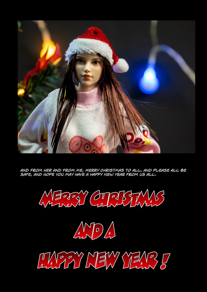 A Lockdown Christmas - 2020 50754988072_7c25af5590_b