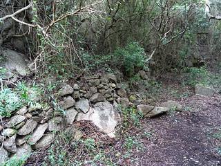 Le nouveau sentier de contournement de Ciappili : murets d'anciennes propriétés