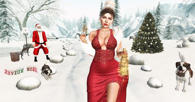 Joyeux Noël à tous - Merry Christmas Everyone