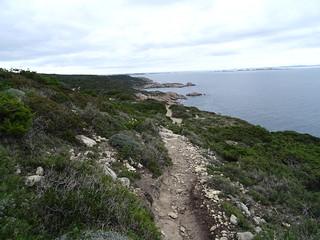 Sentier vers Cala di Labra : Lavezzi et la côte
