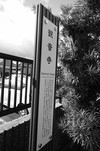 25-12-2020  (part 2) (visiting Tsushima, Aich pref)  (8)