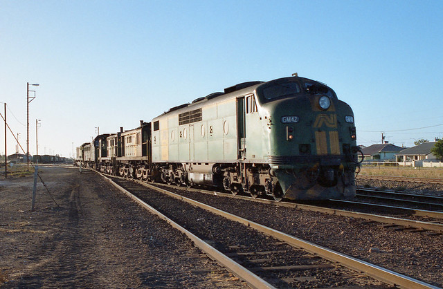 P255. GM42,847,843,701,963,CK2 Shuntimg at Tailem Bend 22-1-94
