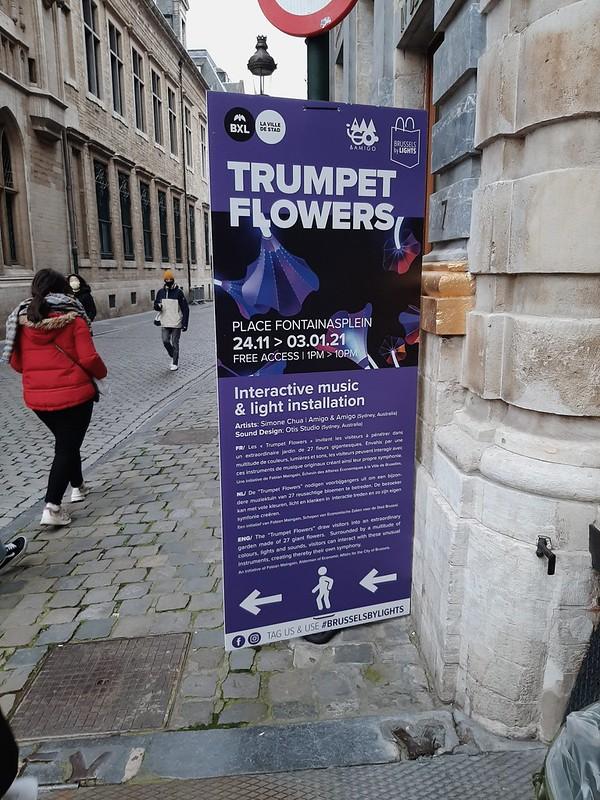 Cartel trumpet flowers