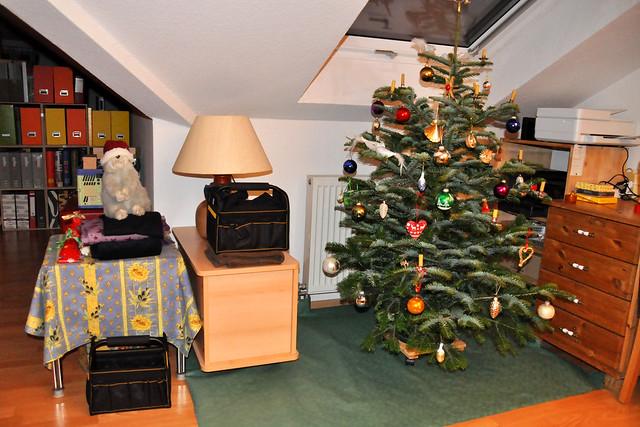 24. Dezember 2020 ... Weihnachtsbaum ... Karla Kunstwadl wartet auf die Bescherung ... Brigitte Stolle