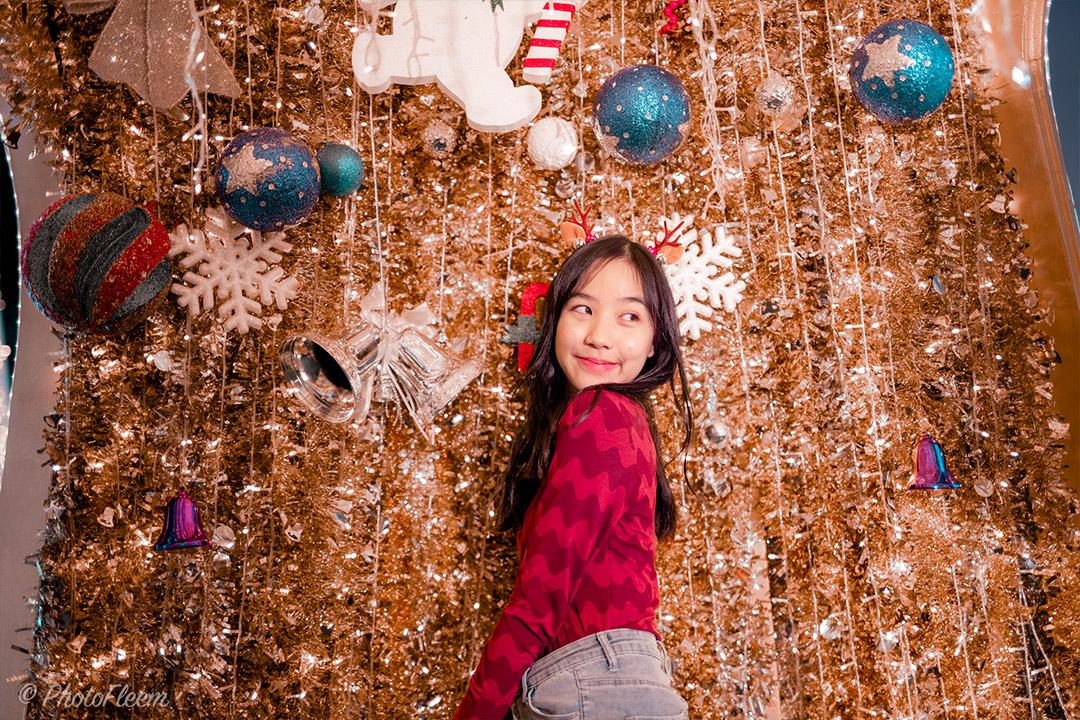 Lightroom-Christmas-Tone-10