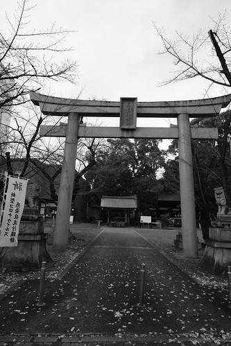 25-12-2020 (part 3) (at Nagoya)  (31)