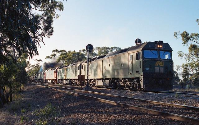 P254. BL35,BL31,G541,703,852 on 6AM2 at Belair 21-1-94