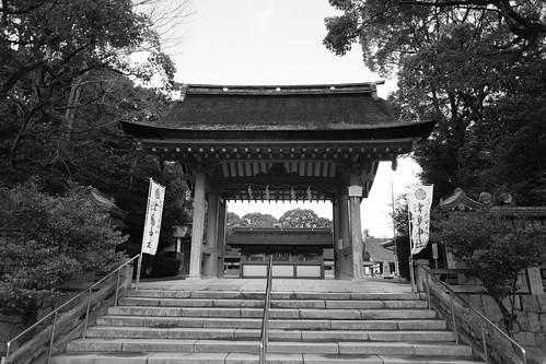 25-12-2020  (part 2) (visiting Tsushima, Aich pref)  (16)