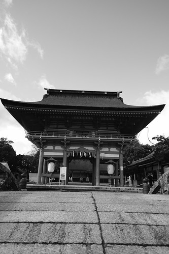 25-12-2020  (part 2) (visiting Tsushima, Aich pref)  (12)