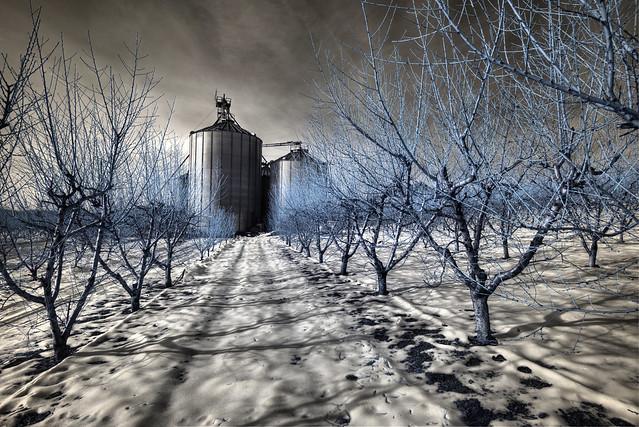 Winter Silo (IR)