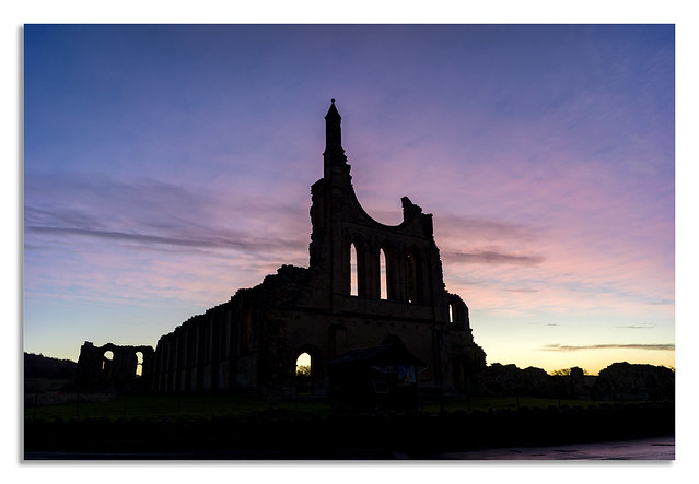 Chasing the Light at Byland. Abbey