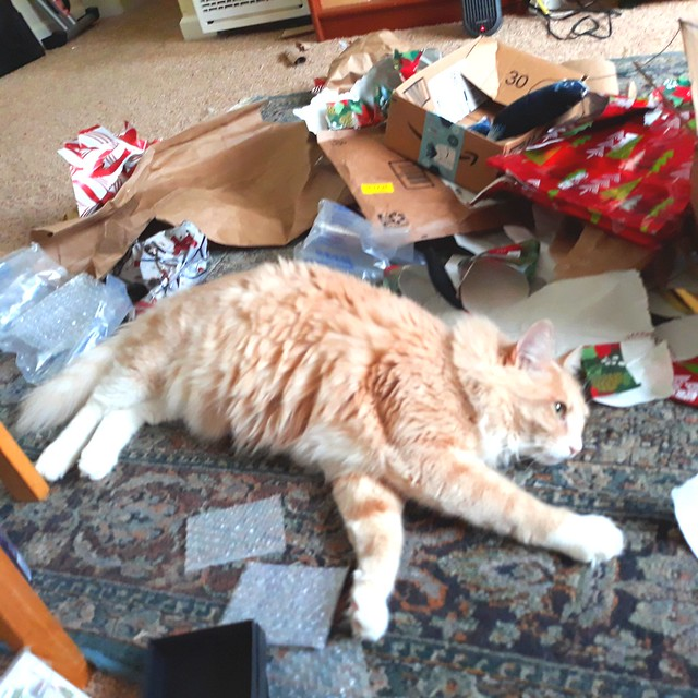 Opening presents tiring!