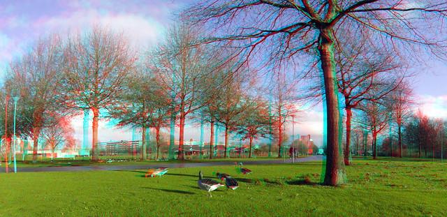 Prinsenpark Rotterdam 3D GoPro