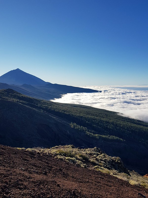 Teide & mar de nubes