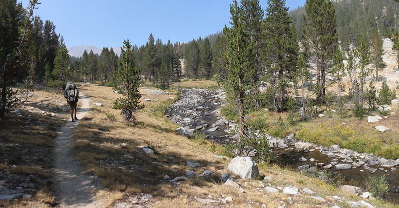 The South Fork Kings River was very calm and had a shallow grade with grassy shores along the Pacific Crest Trail