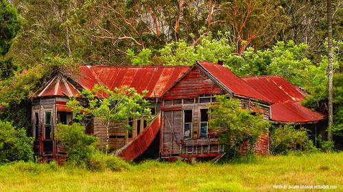 ruraldecay built1901 avalonhouse midnorthcoast nsw australia oldhouse house delapidated fallingdown ruin luminar4 luminar skylum eucalyptuspropinqua greygum edwinandaliciawright avalonroad jilliangraham abandoned
