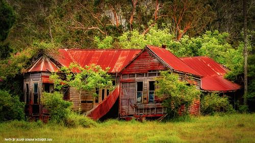 ruraldecay built1901 avalonhouse midnorthcoast nsw australia oldhouse house delapidated fallingdown ruin ortoneffect vignette luminar4 luminar skylum eucalyptuspropinqua greygum edwinandaliciawright avalonroad jilliangraham abandoned