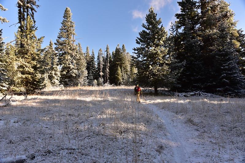 Eightmile Loop Trail