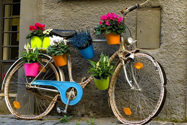 Recycled Bike and Flowers - Italia