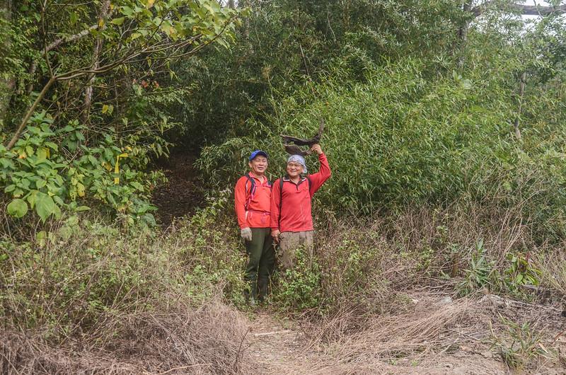 我丹山東峰果園登山口