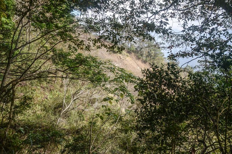 我丹山東峰山徑右側坍方地形 (2)