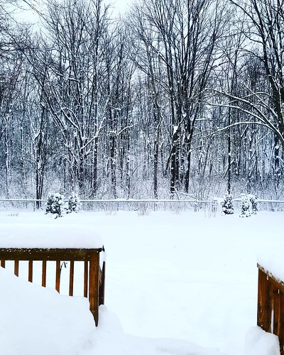Shoveling: ✅ One pair of overalls encrusted with ice: ✅ First cup of coffee: ✅ Next: shower, get dressed in a non-icy pair of overalls, read, write, nap! And listen to some Beethoven. #ahhhhh #snow #wny #