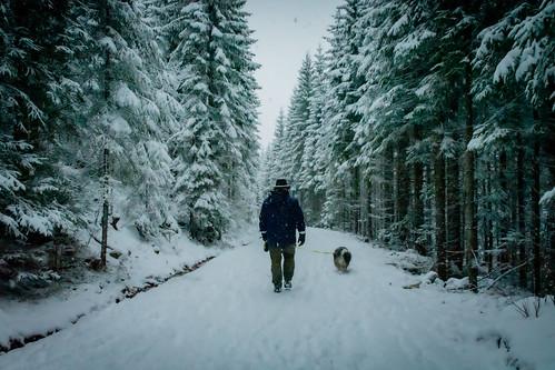 In Explore - Winter Wonderland visited us again