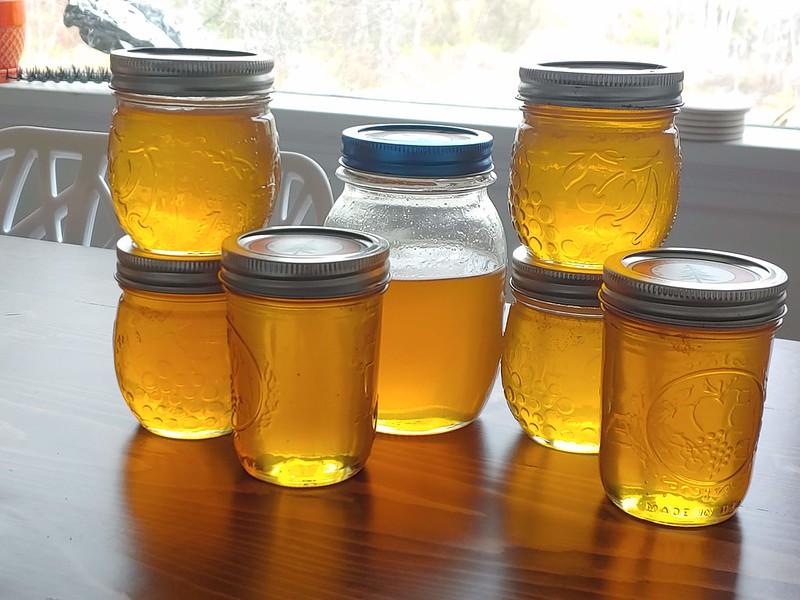 2020 Honey Harvest