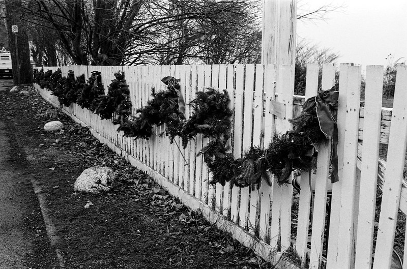 Decorated Picket Fence_