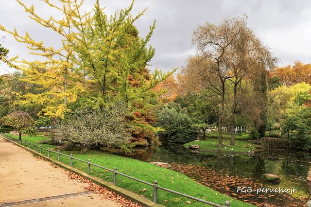 Otoño en el parque-_DSC5431